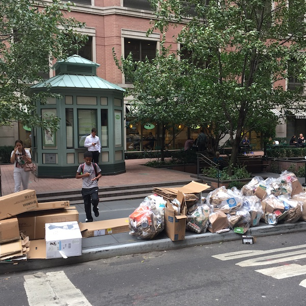Waste Not Want Not: NYC Zero Waste Design Guidelines